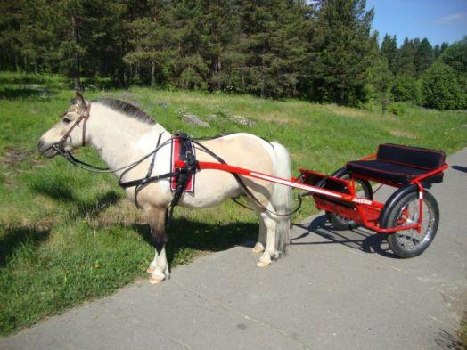 Качалки и тележки для пони